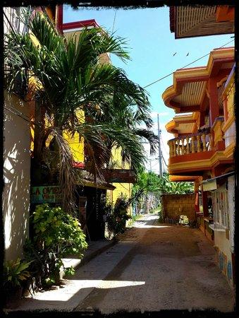 La Oviedo Villa Resort: The dirt track to the resort