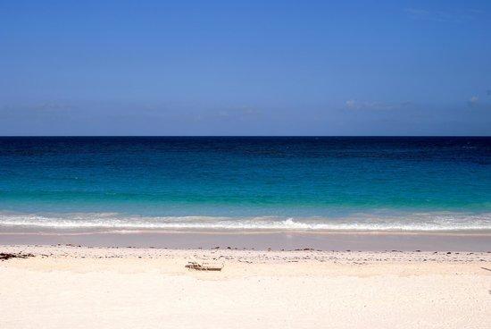 The Landing: Harbour Island Beach