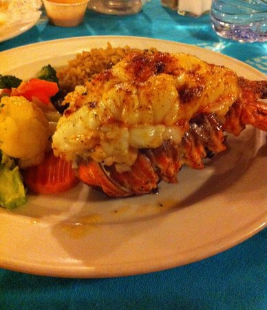 Lobster picture of queen conch harbour island tripadvisor for Absolutely delish cuisine