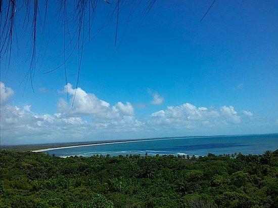 O Ceu De Boipeba Pousada : View from the common area.