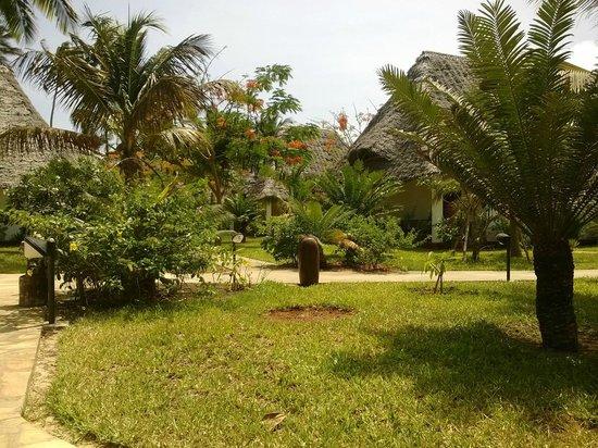 Uroa Bay Beach Resort: Il giardino e i bungalow.