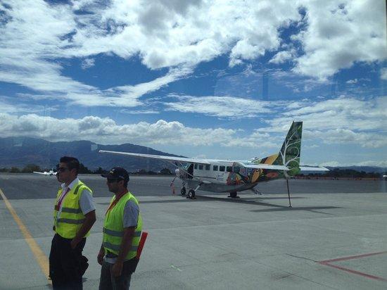 Finca Maresia: Nature air flight to Drake bay