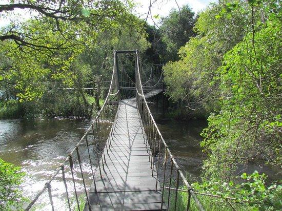 Islands of Siankaba: Suspension bridges to access rooms