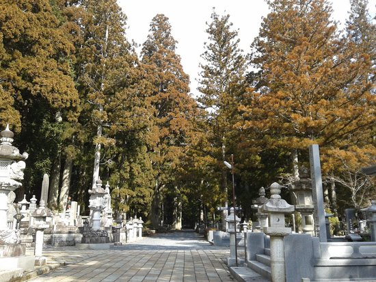 Mount Koyasan : cold but sunny saturday morning