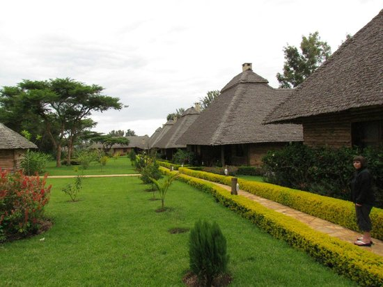 Neptune Ngorongoro Luxury Lodge : View of lodges