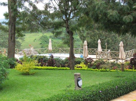 Neptune Ngorongoro Luxury Lodge : Pool and grounds