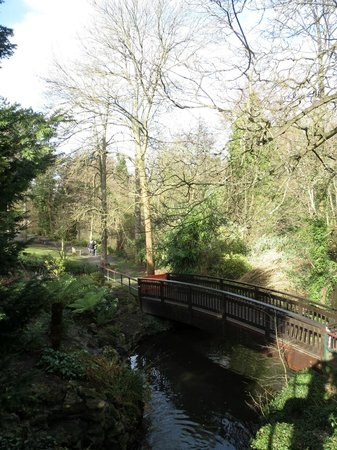 Kelsey Park: View from Park