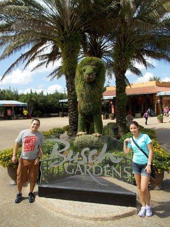 Busch Gardens : Diversão garantida!
