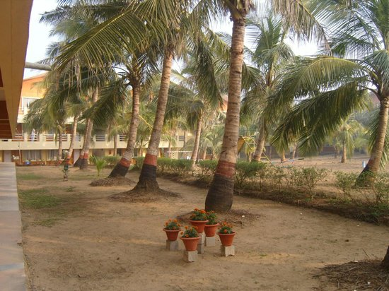 Puri - Golden Sands, A Sterling Holidays Resort : View from our rooms