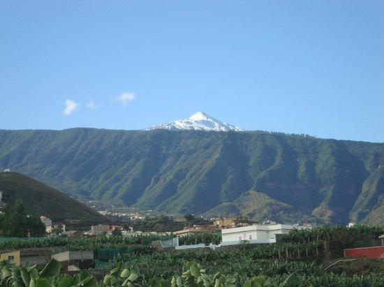 Villa Rosalva : Teide
