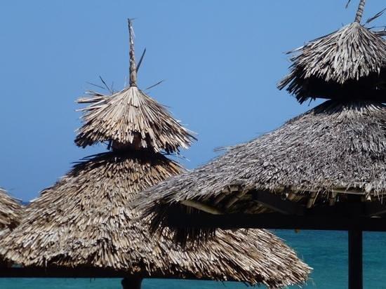 Southern Palms Beach Resort: beach cabana