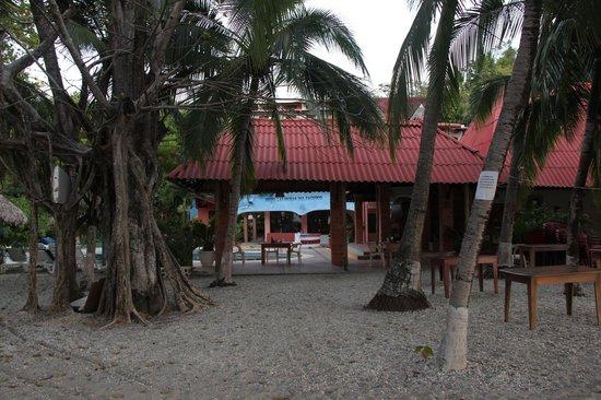Hotel Las Brisas del Pacifico : VUE DE L'HOTEL DEPUIS LA PLAGE