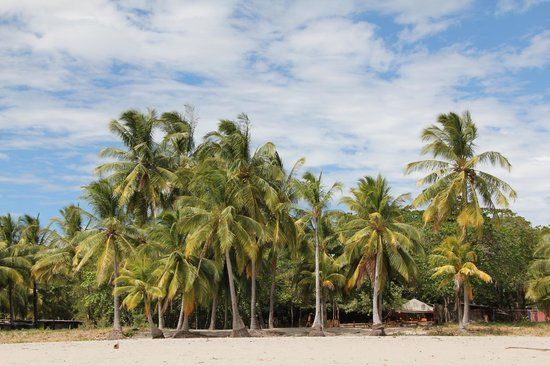 Hotel Las Brisas del Pacifico : PLAGE SAMARA