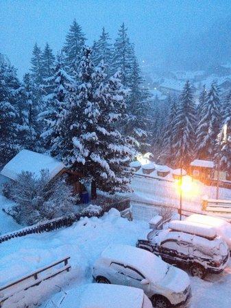 Hotel ai Zirmes: 01gennaio 2014 vista dalla mia camera