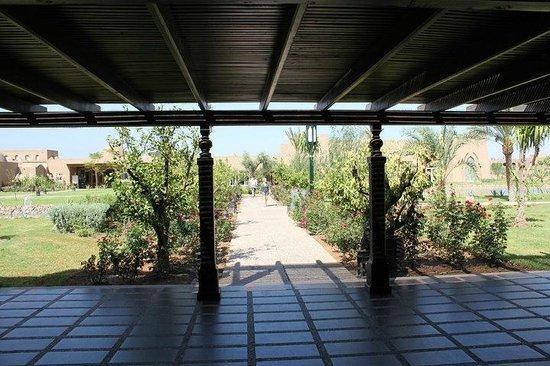 ClubHotel Riu Tikida Palmeraie: gardens