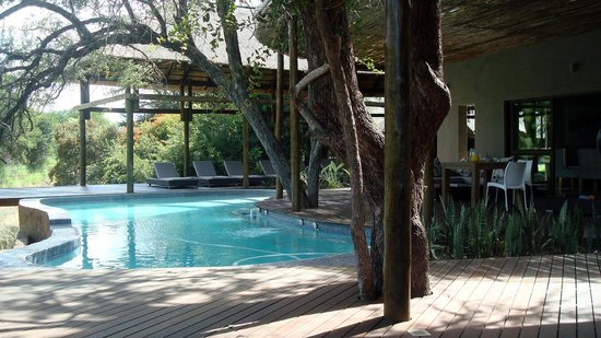 Moditlo River Lodge: View Of Swimming Pool @ The Lodge