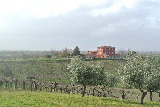 Agriturismo Villa Clementina: Vista del casale dalla strada