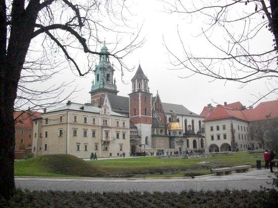Cathédrale du Wawel : Cattedrale del Wawel