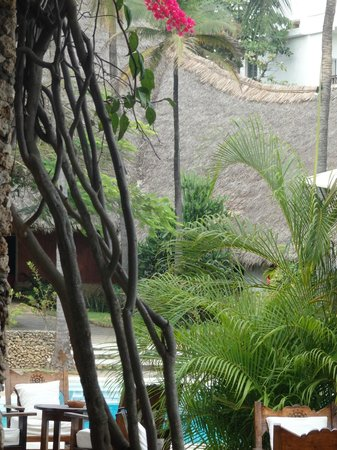 Lawford's Hotel : garden