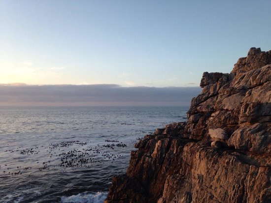 Hermanus Backpackers: Just down the road