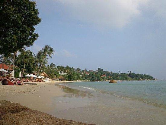 Renaissance Koh Samui Resort & Spa: hotel beach