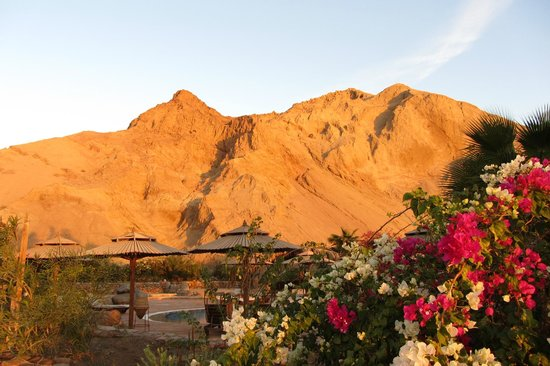 The Bedouin Moon Hotel: The hills at sunrise