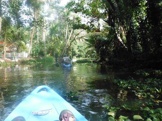 Kerala Kayaking: A gentle paddle down the canal