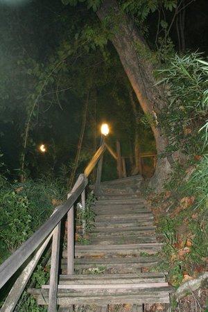 Centara Grand Beach Resort & Villas Krabi: Monkey trail