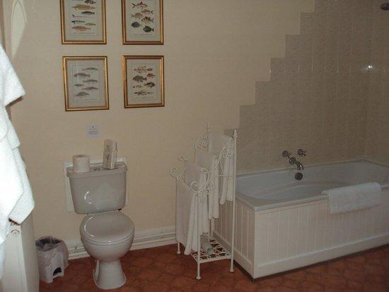 Ellangowan House: Baño