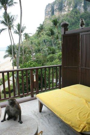 Centara Grand Beach Resort & Villas Krabi: chambre Deluxe
