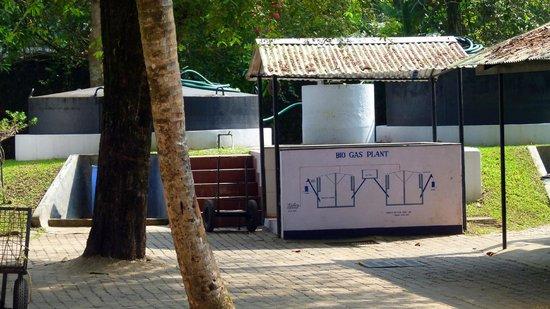 Marari Beach Resort: Système d'épuration des eaux usées