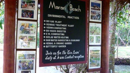 Marari Beach Resort : La politique environnementale de l'hôtel
