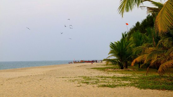 Marari Beach Resort: Immense plage et eau de mer chaude et très agréable (en décembre)