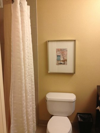 Hyatt Regency San Antonio: Jr Suite Bathroom