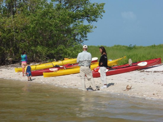 Marco Island Boat Tours: Boat Assisted Kayak Eco Tour - On a remote beach