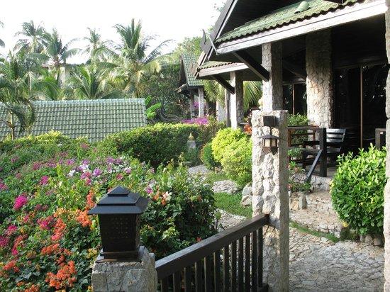 Boomerang Village Resort : de notre terrasse