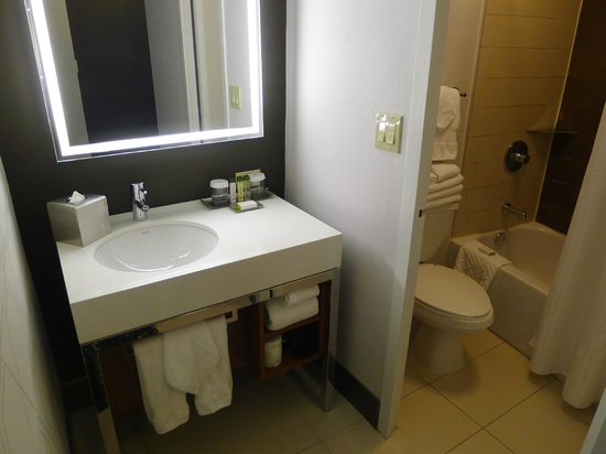 Bathroom Sinks New York City the bathroom sink and amenities separate from the shower - picture
