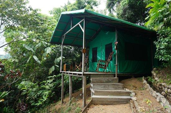 Luna Lodge : Onze 'tent'