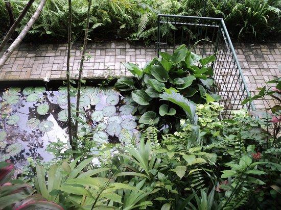 Jiwa Damai Organic Garden & Retreat: view from stairs leading to lumbung
