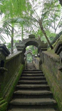 COMO Shambhala Estate: Нелегкий путь к вершине