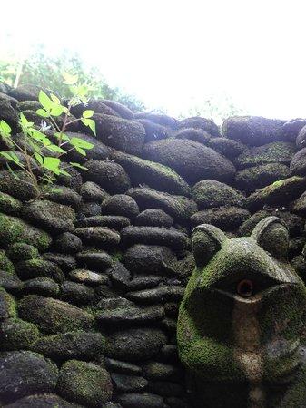 Jiwa Damai Organic Garden & Retreat: shower spout