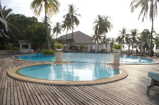 Cape Panwa Hotel: This pool was WARM so I guess bug control is great