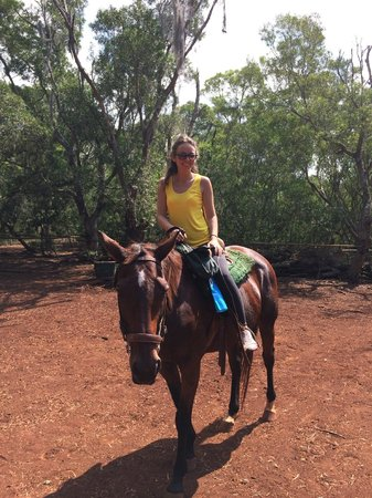 Happy Trails Hawaii: Horseback Riding