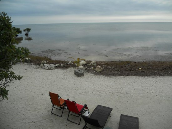 Barnacle Bed and Breakfast : la plage