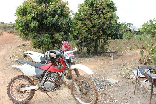 Cambodia Dirtbike Tours - Day Tours: hondas