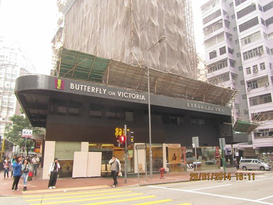 Butterfly on Victoria : Hotel exterior