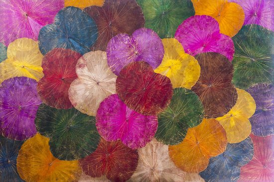 Himapan Gallery: Peinture sur feuilles de lotus
