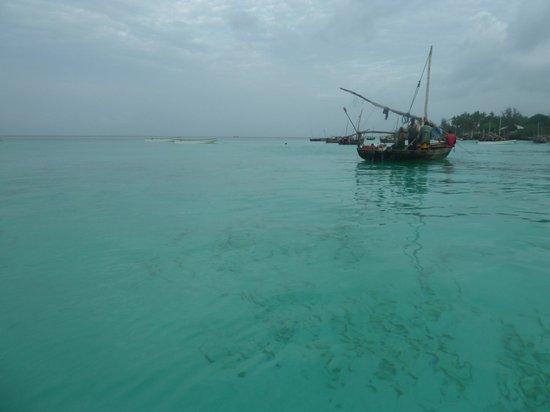 Uroa Bay Beach Resort: eau turquoise et a température ambiante