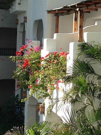 Pueblo Bonito Los Cabos : sacadas floridas dos apts muito lindas