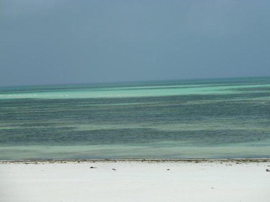 Uroa Bay Beach Resort : plage de l'hôtel